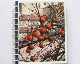 Travel journal - Grasse