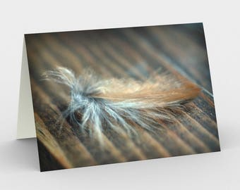 Sparrow Feather Card, Blank Note cards, Simple Note Cards, Greeting Cards, Three Note Cards, 5x7 Cards, Feather Card, All Occasion Cards