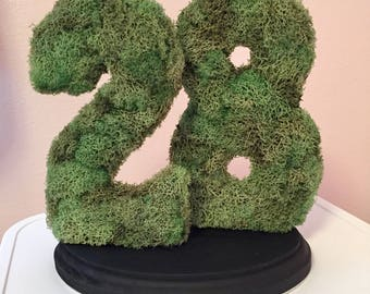 Moss double numbers...