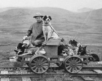 Dogmobile trip from Shelton to Nome, Alaska, 1912, Cart on Railway Tracks #2