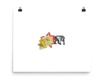 Anteater and Flowers - Poster Print