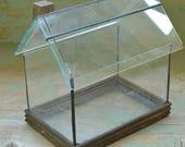 Terrarium, Small Glass Box,  DIY Terrarium Glass Box