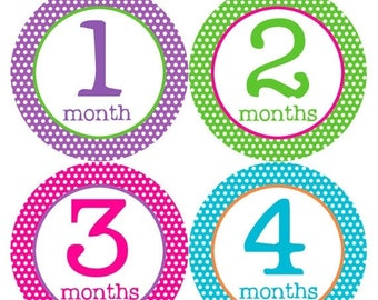 Monthly Baby Stickers Baby Month Stickers Baby Girl Month Stickers Monthly Photo Stickers Monthly Milestone Stickers 200