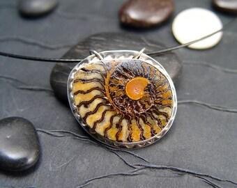 AMMONITE FOSSIL PENDANT Necklace Jewelry Specimen