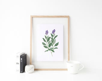 Sage Watercolor - Sage Herbs Print - 8x10 Watercolor Print - Watercolor Herbs Prints - Sage Print - Herb Art - Kitchen Decor