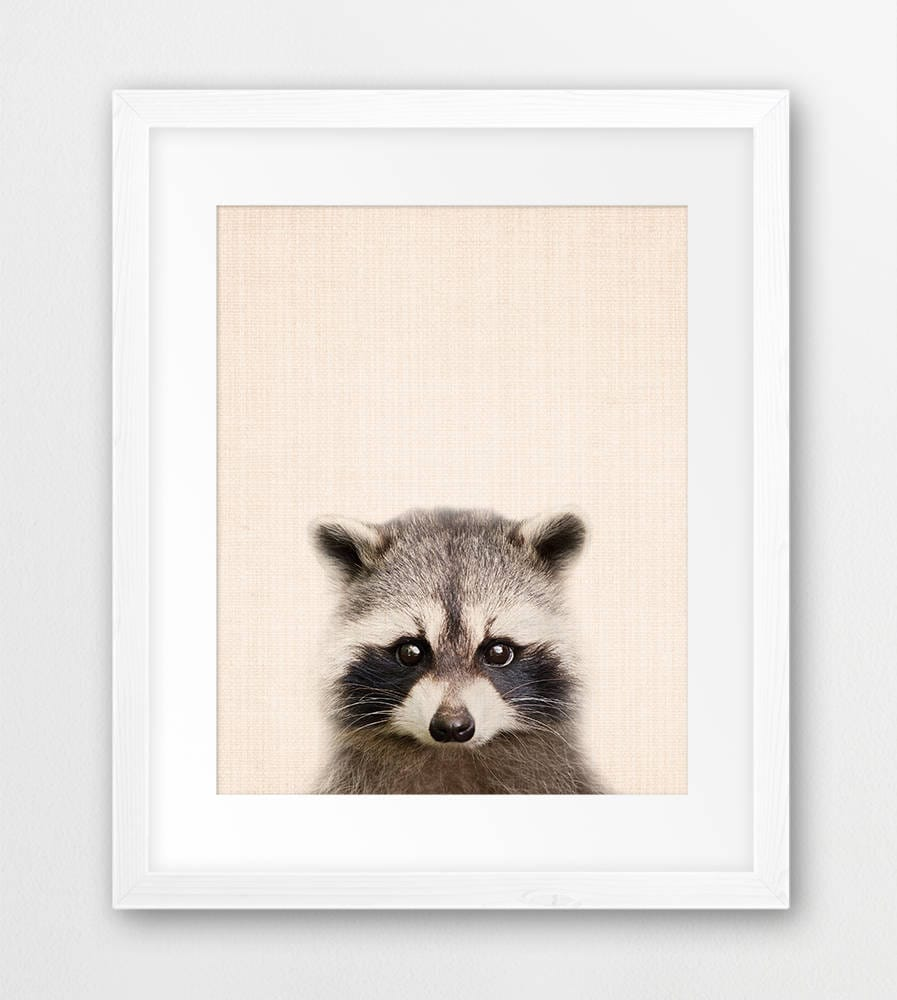 raccoon print woodlands nursery wall art baby raccoon