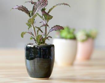 NEW! SUCCULENT PLANTER // air planter- succulent gift- bridesmaid gift - wedding gift - ceramic succulent planter- mini planter- emerald