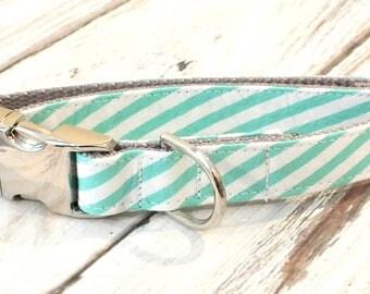 "SALE, Size Small 3\4"", Ready to Ship Aloe Seersucker Striped Dog Collar, preppy, metal hardware"