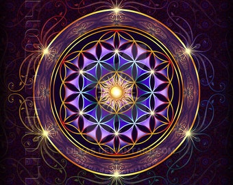 Life Coaching Reading Package with Archangel Metatron- Advance your spiritual path and connect to a higher path. Save, Half Off 3rd Reading!