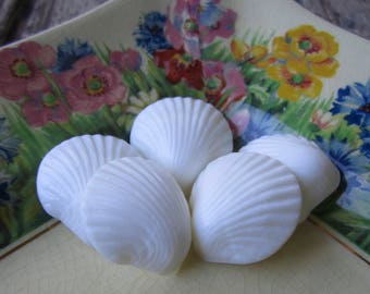 5 Vintage White Shell Buttons
