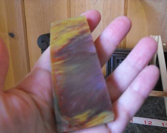 Arizona Petrified Wood Slab, Rainbow Chenile Colors, Cabbing Rough