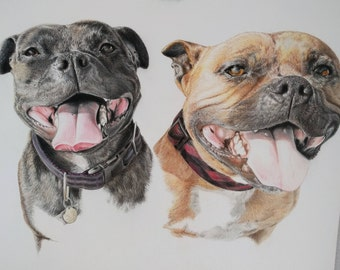 Custom Pet Portrait of 2 Pets on same paper 11 X 14 Head and neck