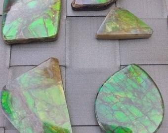 Green Ammolite cabochons, Blue ammolite, Ammolite cabochon, Alberta gemstone, rare gem, loose stone, freeform ammolite, feng shui stone