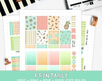 Summer printable planner stickers for Erin Condren LifePlannerTM pastel summer vacation silhouette cut files watermelon lemon camera sun kit
