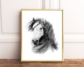 Horse wall art, Horse Poster, Horse printable, Black and white horse prints, Horse photography, Horse drawing, Horse decor, Horse art