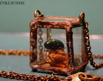 Necklace mini cabinet of curiosities with beetle Chrysochus Auratus with volcanic stone