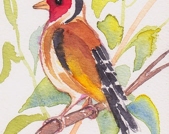 Miniature watercolor elegant Goldfinch