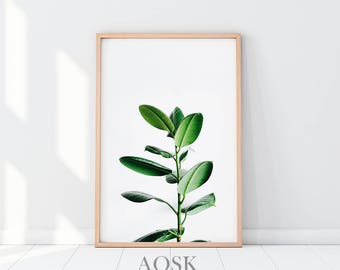 Leaves Poster Print, Plant Art Printable, Plant Leaves Photo, Plant Wall Print, Greenery Printable, Green Plant Wall Art, Botanical Poster