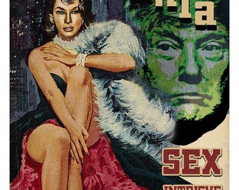 Framed 11x17 Melania Trump Parody Poster
