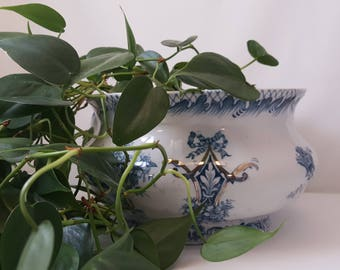 Antique Victorian Chamber Pot - Plant Potter