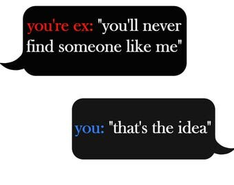 Sarcasm Funny Zinger Texting You're Ex Text You'll Never Find...That's the Idea Wall Art Print Printable Email Digital Delivery