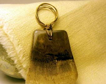 petrified wood wired pendant