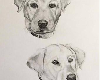 Custom Pet Portrait - 2 or more