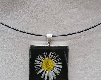 Round neck + square, resin and dried Daisy flower pendant