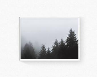 Forest print, foggy forest, forest wall art, misty forest poster, scandinavian wall art, nature poster, fog forest, pine trees wall art