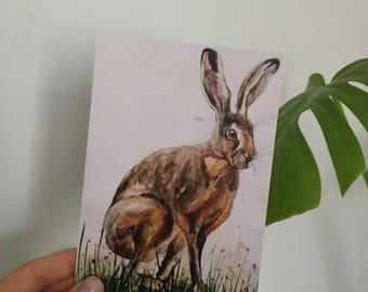 Mr Hare Postcard