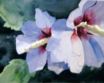 """Original watercolor """"Rose of Sharon"""""""