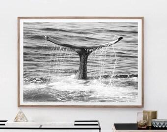Whale Print - Whale Tail, Digital download, Black And White Photo, Ocean Print, Beach Wall Art, Minimalist Poster, Printable Wall Art