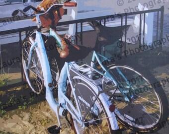 Blue Bikes in Rehoboth Beach
