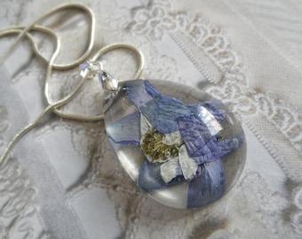 Colorado Blue Columbine Encased In Glass-Teardrop Pendant-Colorado State Flower-Nature's Art-Nature & Colorado Inspired-Gifts Under 35