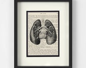 Lungs Anatomy over Vintage Medical Book Page - Respiratory Therapy, Respiratory Therapist, Respiratory Therapist Gift, Lung Cancer Awareness