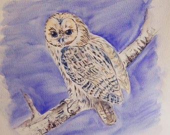 chouette dans la nuit , oiseaux, nature, nuit, dessin, encre, original signé