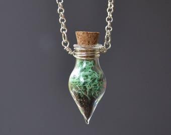 Moss Necklace, Spring Jewelry, Glass Terrarium Necklace, Miniature Terrarium, Botanical Jewelry, Moss Jewelry, Plant Jewelry, Live Plant