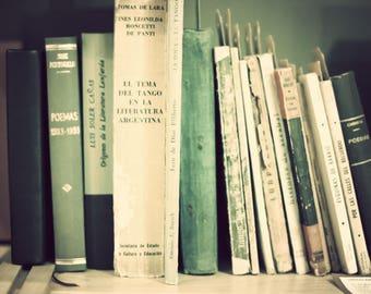 SALE Dorm wall art, dorm decor, dorm art, book art, art book, book lover, canvas art, canvas wall art, wall art canvas, book photography