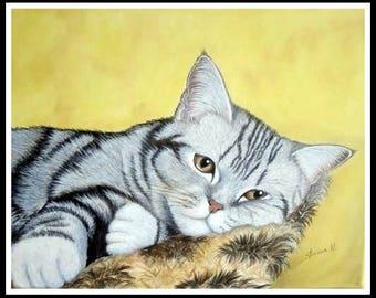 Cat on cushion oil on canvas portrait