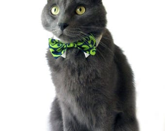 Blue and Lime Green Damask Bow Tie, Necktie, or Bow on a Shirt Style Collar for both Dogs & Cats