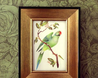 Extinct Parrot Colorful Art Print - Seychelles Parakeet