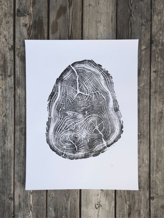 Tree Anatomy, Botanical art print, real tree stump art, Black Locust Tree. Tree wall art, Tree stump print, Tree ring wall art, Erik Linton