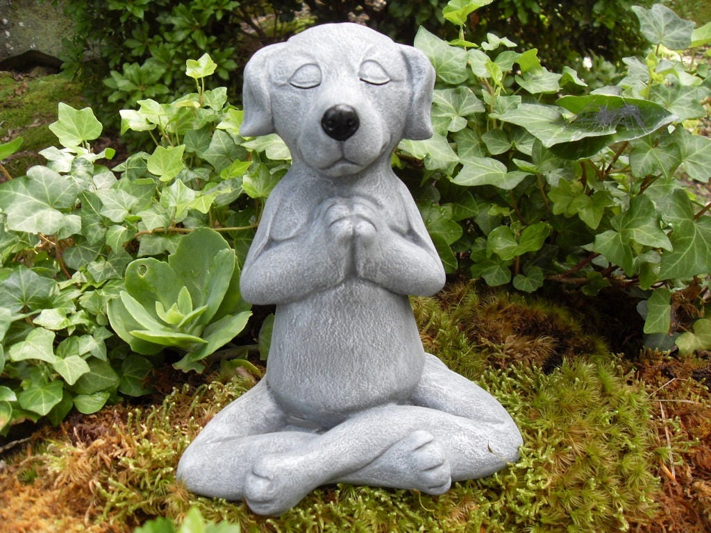 dog statue meditating dog statue zen statuebuddha dog. Black Bedroom Furniture Sets. Home Design Ideas