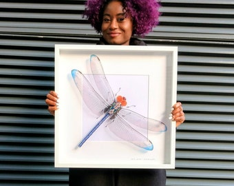 Giant Dragonfly Recycled Art Wings Framed Art Blue Dragonfly Insect Art Steampunk Dragonfly Mother's Day Gift For Her Wall Art Home Decor