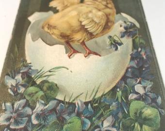 Antique Vintage Easter Post Card, Hatching Chick, German, Embossed, Ephemera, Early 1900s