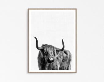 Highland cow print, highland cow, printable cow print, scottish cow, highland cow wallart, scottish gifts, cow photo print, indie style
