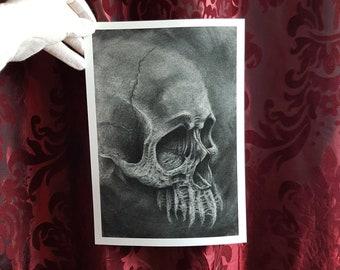 Cranium Print