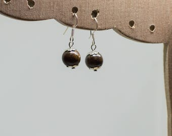 Bronzite earrings