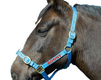 Personalised Embroidered Headcollar Full Size All Colours