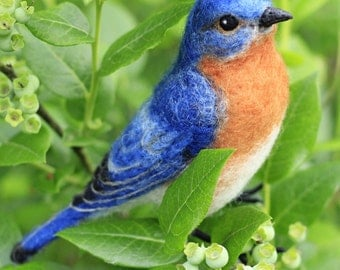 Made to order, Needle Felted Male Eastern Bluebird, life size felted bird